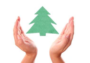 Hand with ecology handmade pine tree