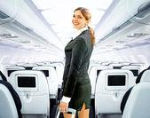 Fotografia assistente di volo
