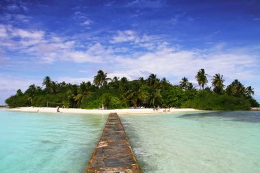 Paradise island of Maldives