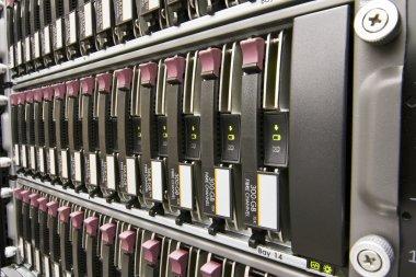 Row of hard drives
