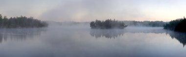 Morning fog on forest lake