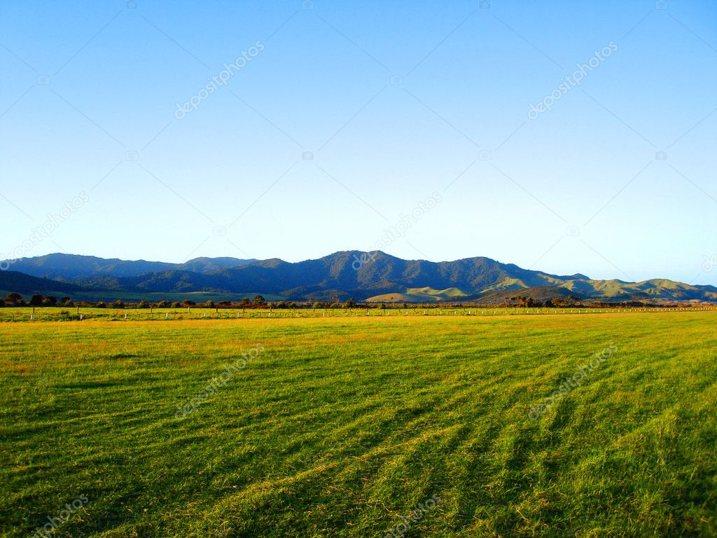 Grassy field of the okiwi runway nz stock photo cloudia 2460572 grassy field of the okiwi runway nz stock photo voltagebd Images