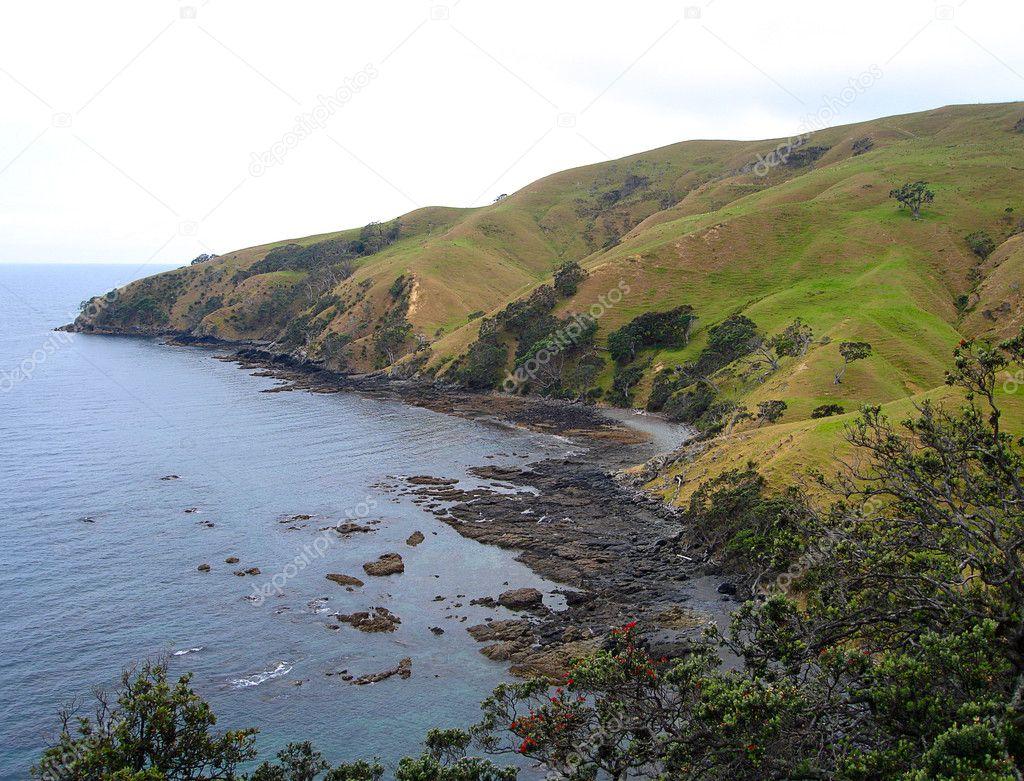 Coromandel Coastline, New Zealand