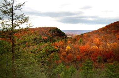 Autumn Hills of West Virginia