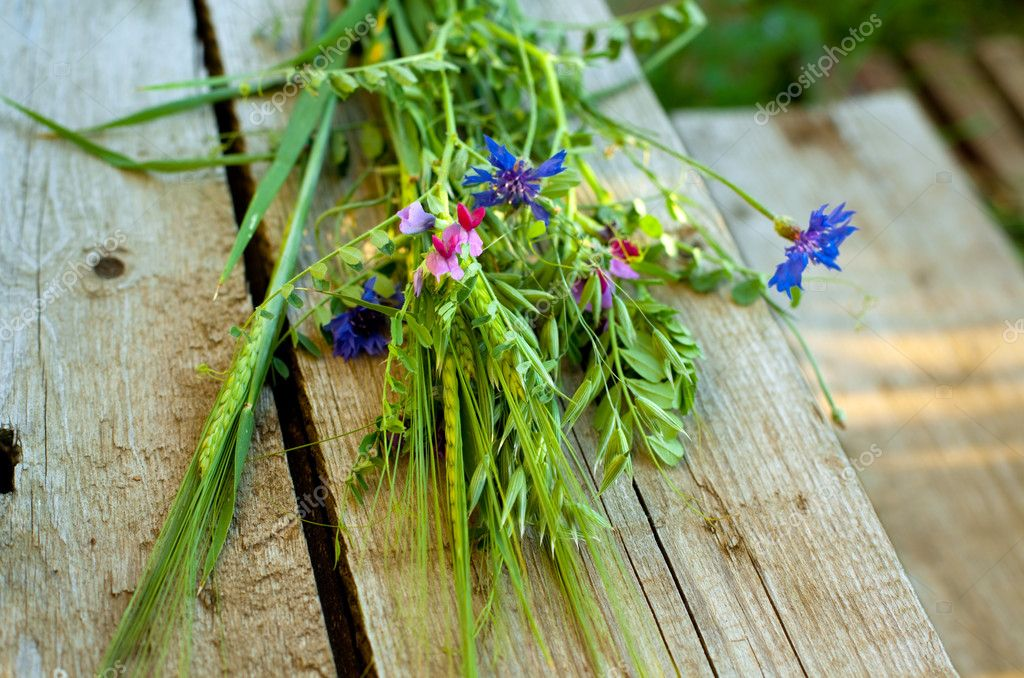 Bunch of wild flowers and cereals