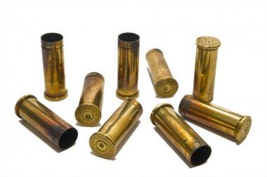 38 special casings