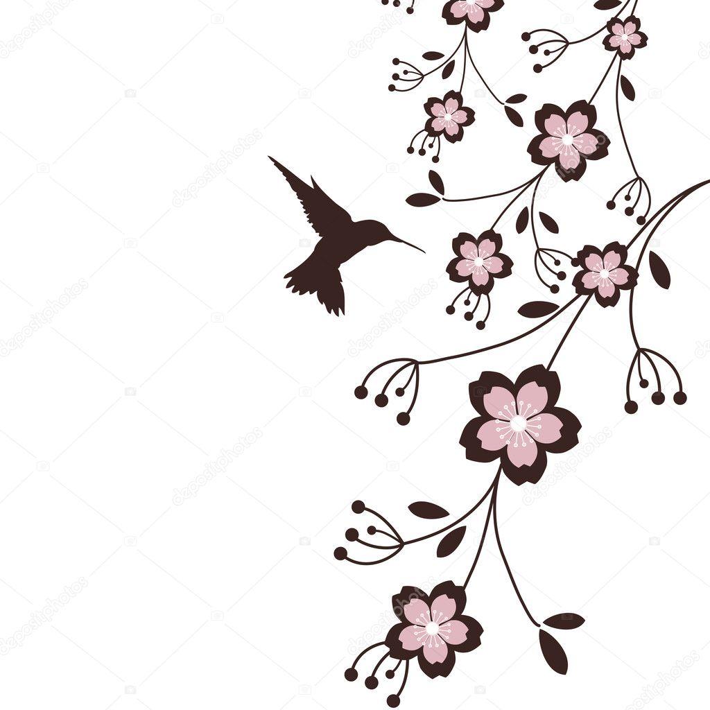 Hummingbird & Sakura