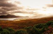 kouzlo Skotska