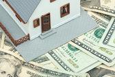 model domu, spočívající na peníze