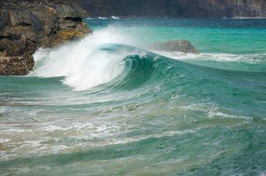 Crashing Wave on the Na Pali Coast, Kauai stock vector