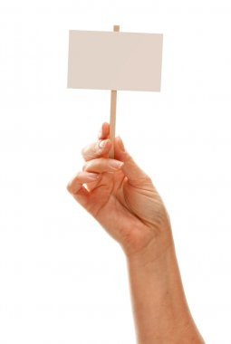 Woman Holding Blank White Sign Isolated