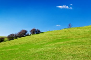 Green hill with a beautiful clear sky
