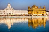 goldener Tempel in amritsar, punjab, indi