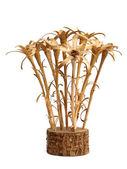 Wooden edelweiss