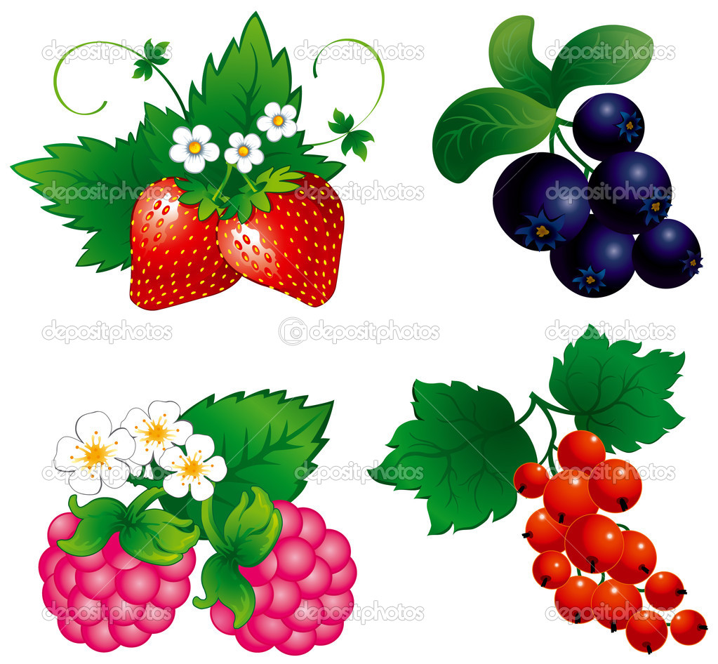Set of berry