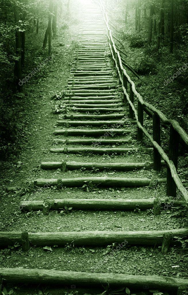 Фотообои Stairway to heaven
