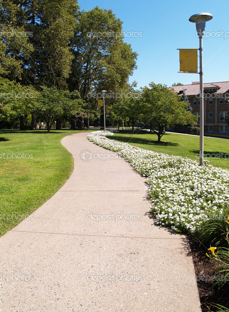 Curving sidewalk on a college campus