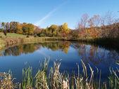 Fotografie Tranquil pond