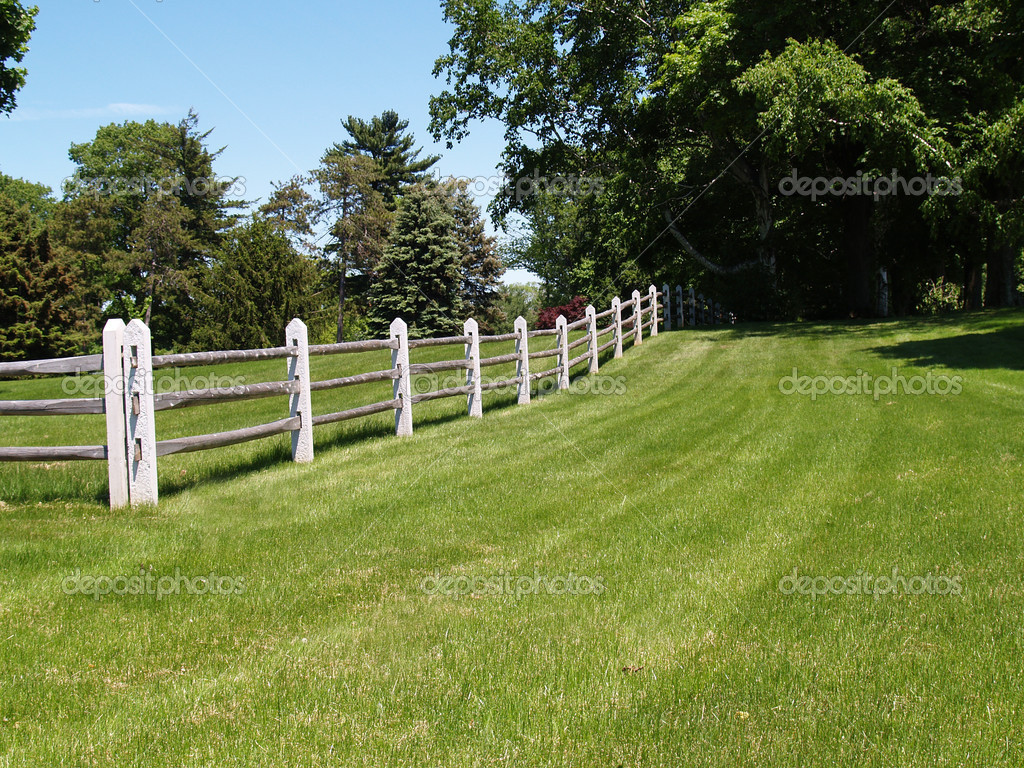Split rail wood fence by a field
