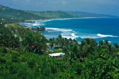 Panoramic view of Barbados island
