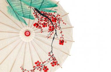 Isolated half oriental umbrella