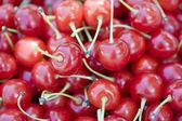 fanyar cseresznye