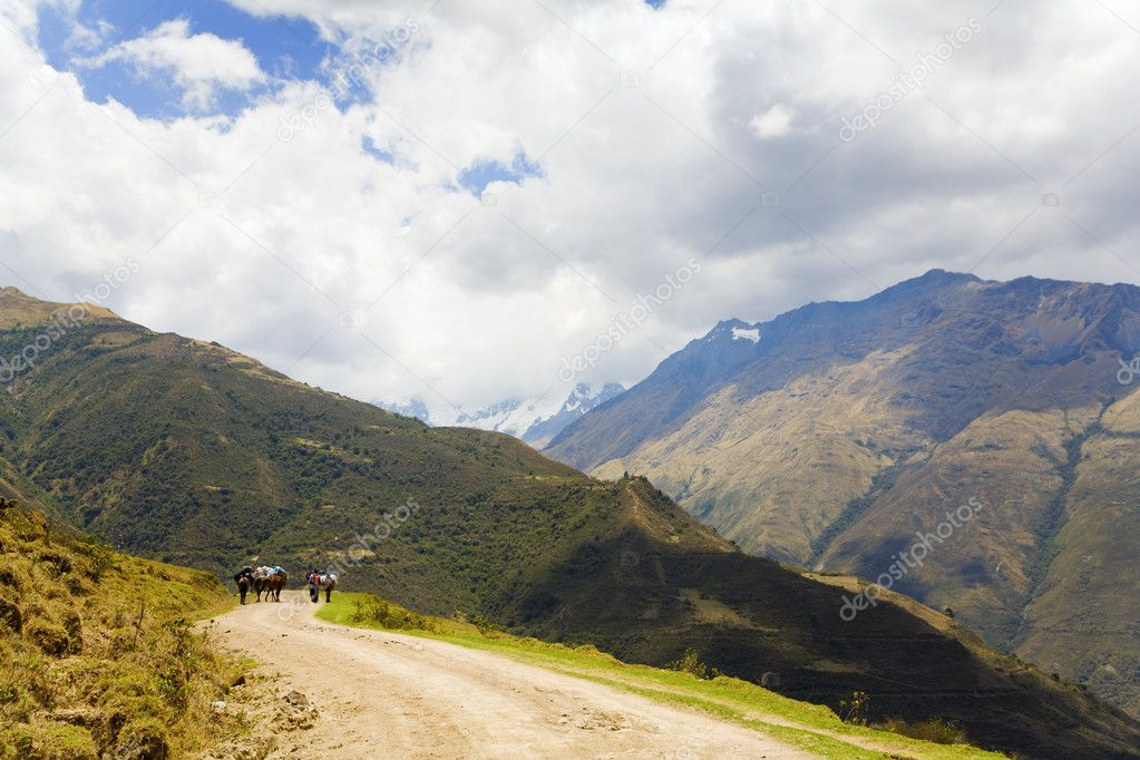 On the road in Andes