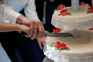 Newlywed couple cutting wedding cake