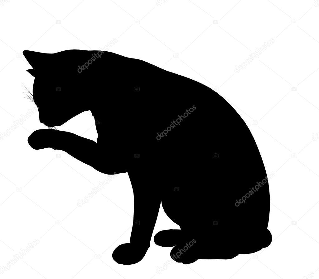 猫の図のシルエット ストック写真 Kathygold 2659377