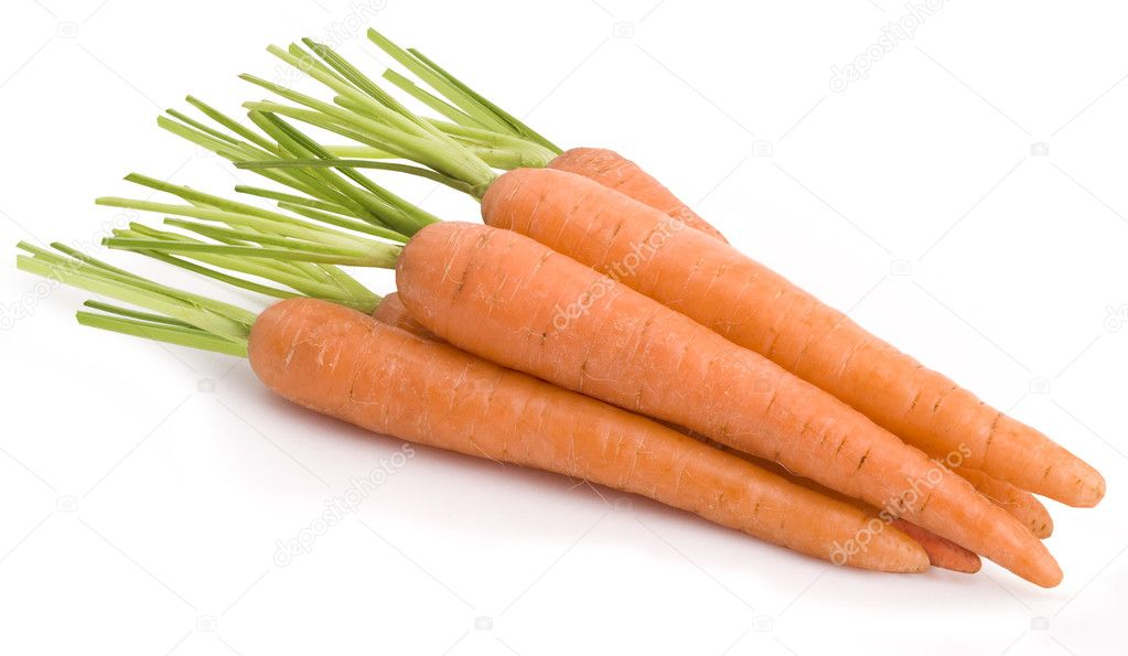 Carrot vegetable group