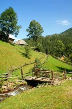 Landscape of Carpathians