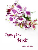 White and Purple flowers card background