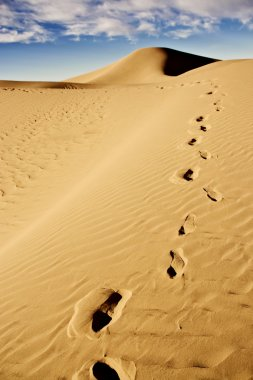 Footprints on desert sand dune