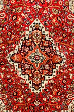Colorful indian carpet