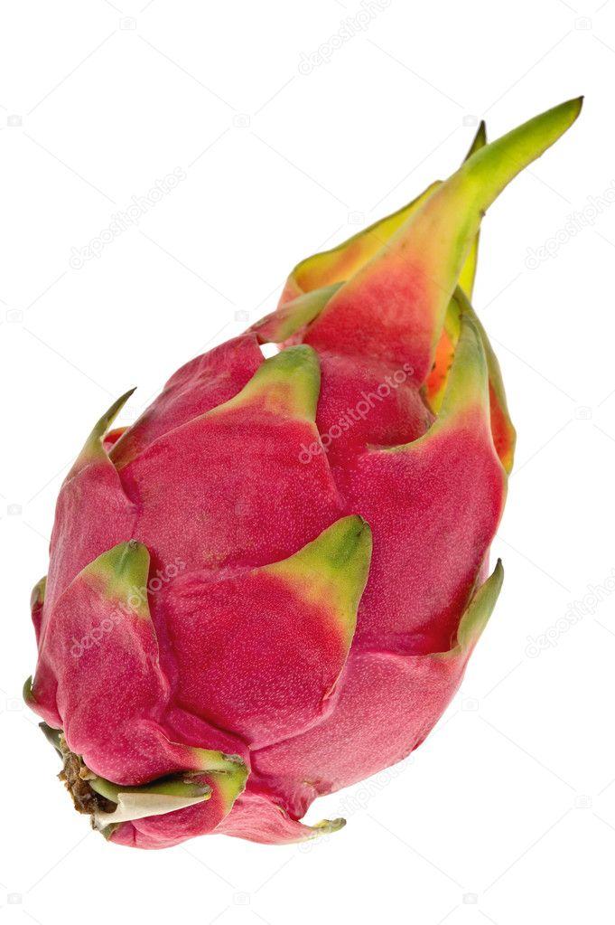 An exotic asian dragon fruit