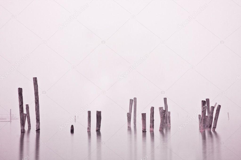 Wood in water in mist
