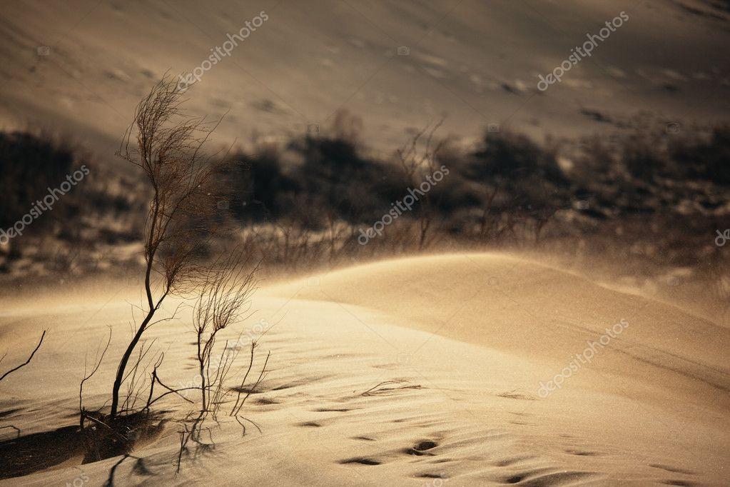 Sand storm in desert