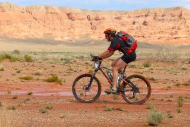 Mountain biker racing in desert canyon