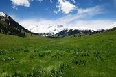 jaro v horském údolí