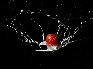 Strawberry cream splash 1