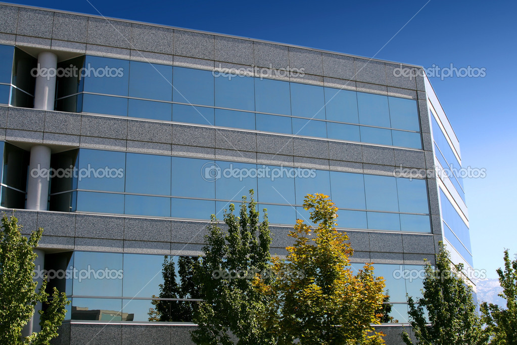Front of the Mirrored Business Building