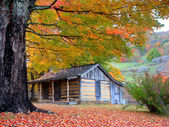 Photo Beautiful Rustic Log Cabin in Fall