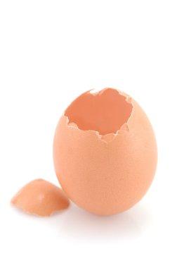 Cracked chicken egg