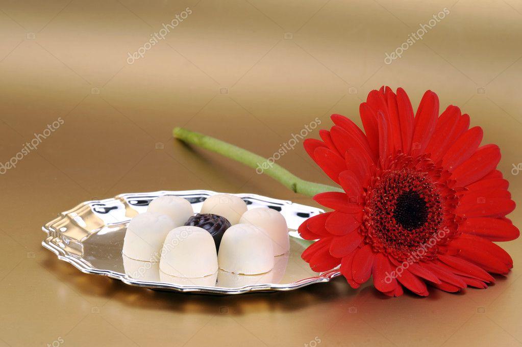 Fleur Rouge Et Chocolat Blanc Photographie Taden1 C 2672089