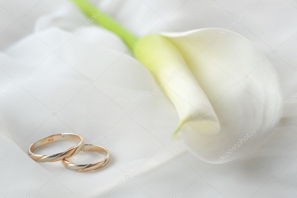 Wedding rings and white flower on white stock photo taden1 2673543 wedding rings and white flower on white stock photo mightylinksfo