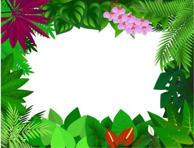 Tropical forest frame