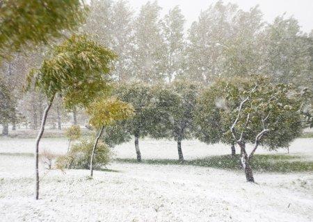 Photo pour Tempête de neige précoce dans le parc d'automne - image libre de droit