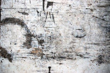 Photo pour Fond grunge de planche de bois altérée blanche - image libre de droit