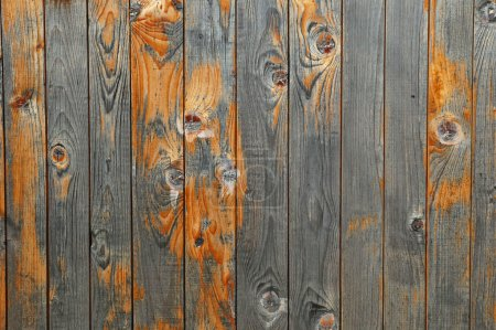 Photo for Beautiful wooden fence texture close-up - Royalty Free Image