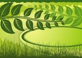 Green summer background with grass and place for text